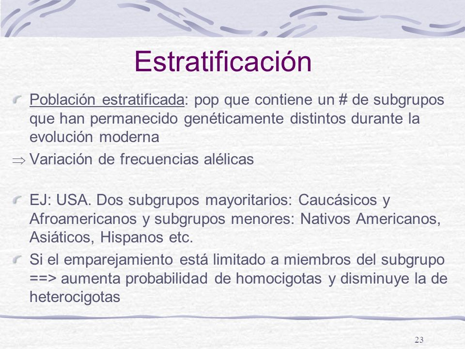 23 Estratificación Población estratificada: pop que contiene un # de subgrupos que han permanecido genéticamente distintos durante la evolución modern