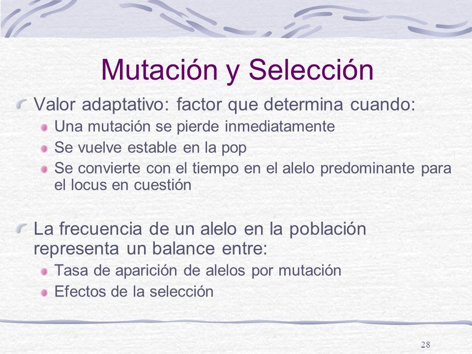 28 Mutación y Selección Valor adaptativo: factor que determina cuando: Una mutación se pierde inmediatamente Se vuelve estable en la pop Se convierte