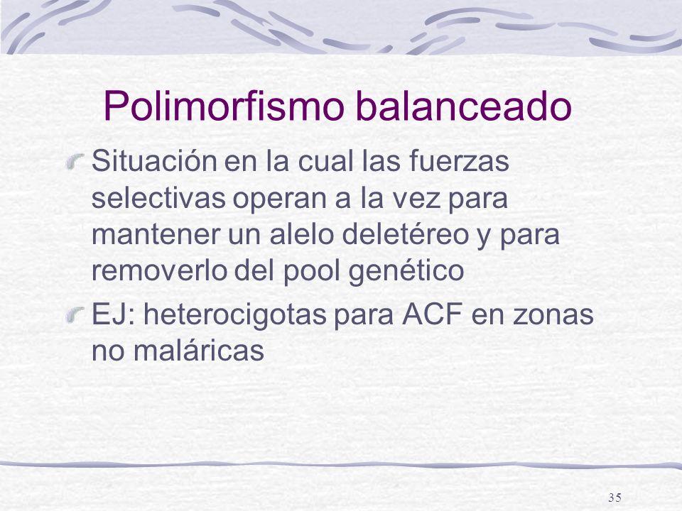 35 Polimorfismo balanceado Situación en la cual las fuerzas selectivas operan a la vez para mantener un alelo deletéreo y para removerlo del pool gené