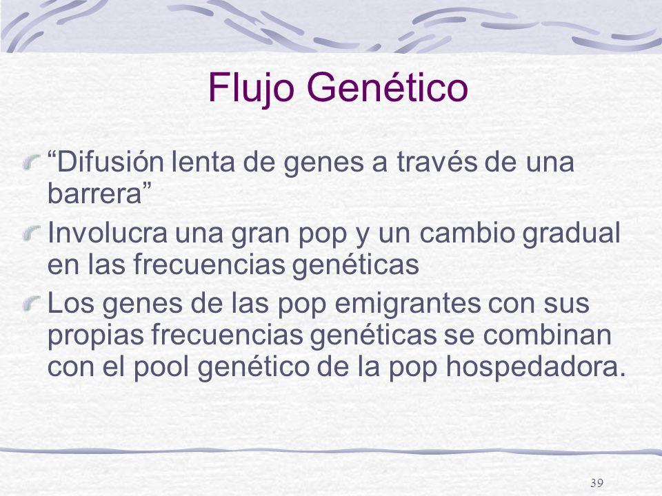 39 Flujo Genético Difusión lenta de genes a través de una barrera Involucra una gran pop y un cambio gradual en las frecuencias genéticas Los genes de