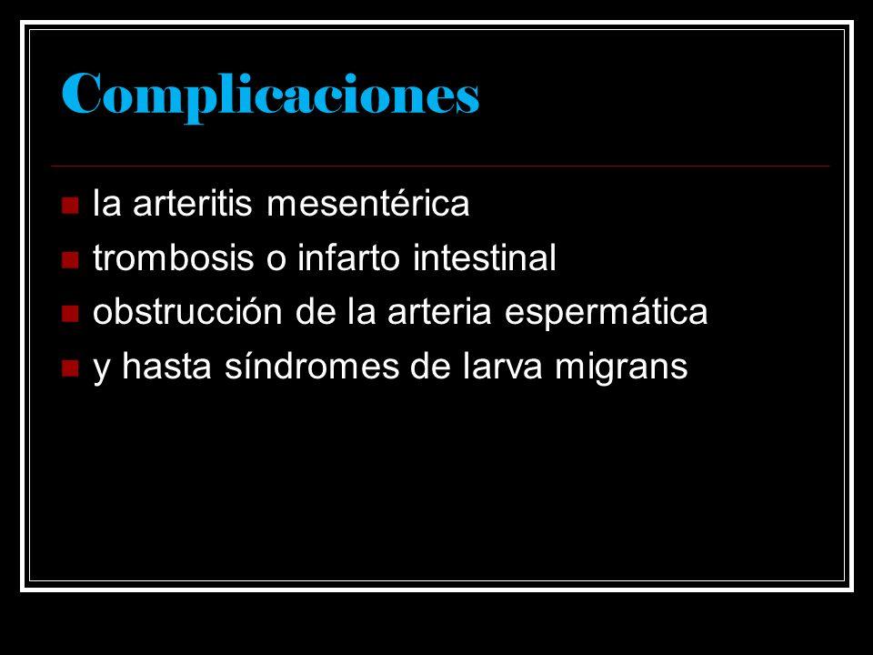 Complicaciones la arteritis mesentérica trombosis o infarto intestinal obstrucción de la arteria espermática y hasta síndromes de larva migrans