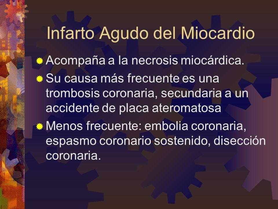 Infarto Agudo del Miocardio Acompaña a la necrosis miocárdica. Su causa más frecuente es una trombosis coronaria, secundaria a un accidente de placa a