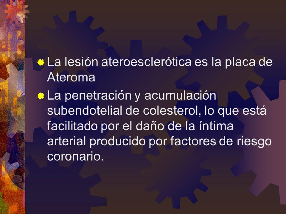 La lesión ateroesclerótica es la placa de Ateroma La penetración y acumulación subendotelial de colesterol, lo que está facilitado por el daño de la íntima arterial producido por factores de riesgo coronario.