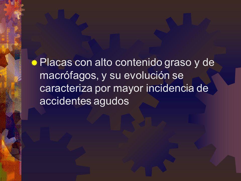 Placas con alto contenido graso y de macrófagos, y su evolución se caracteriza por mayor incidencia de accidentes agudos