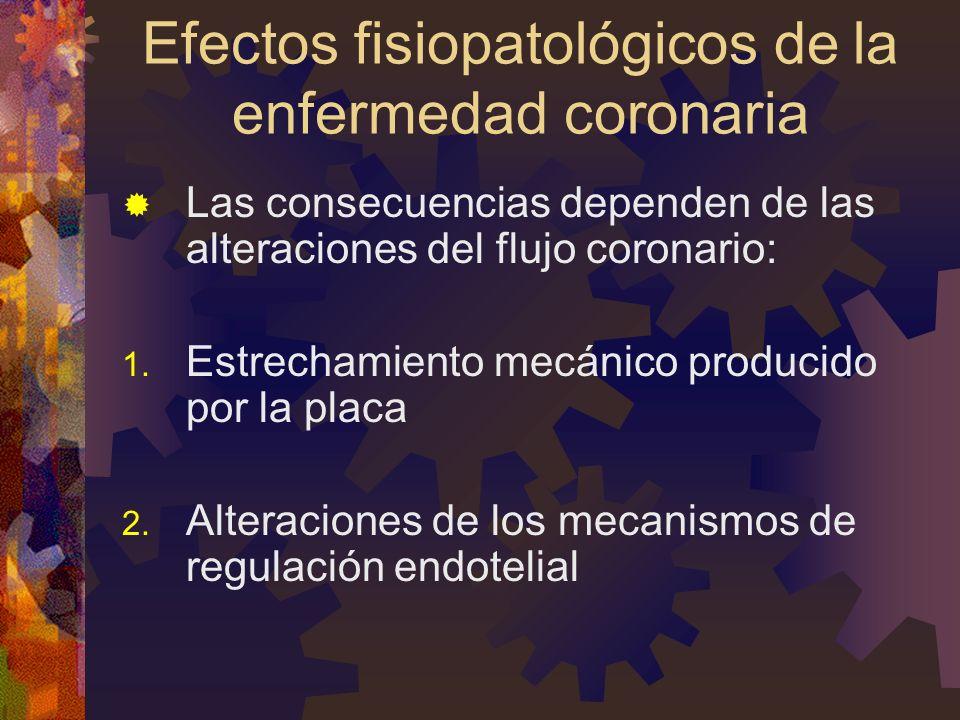 Efectos fisiopatológicos de la enfermedad coronaria Las consecuencias dependen de las alteraciones del flujo coronario: 1. Estrechamiento mecánico pro