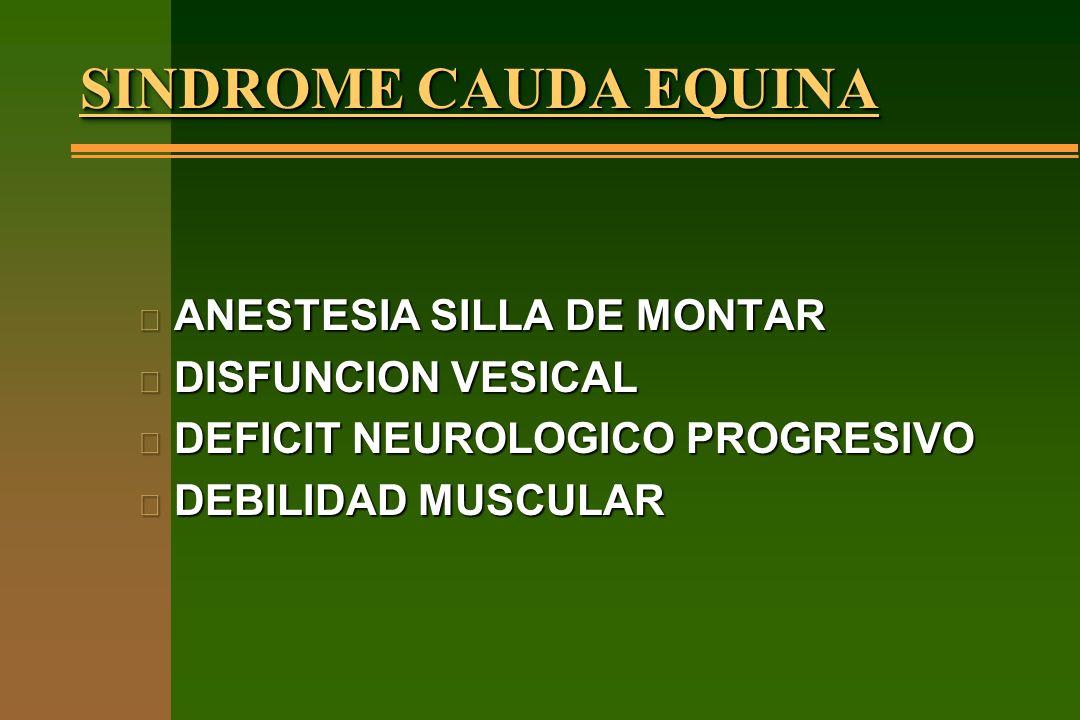 SINDROME CAUDA EQUINA n ANESTESIA SILLA DE MONTAR n DISFUNCION VESICAL n DEFICIT NEUROLOGICO PROGRESIVO n DEBILIDAD MUSCULAR