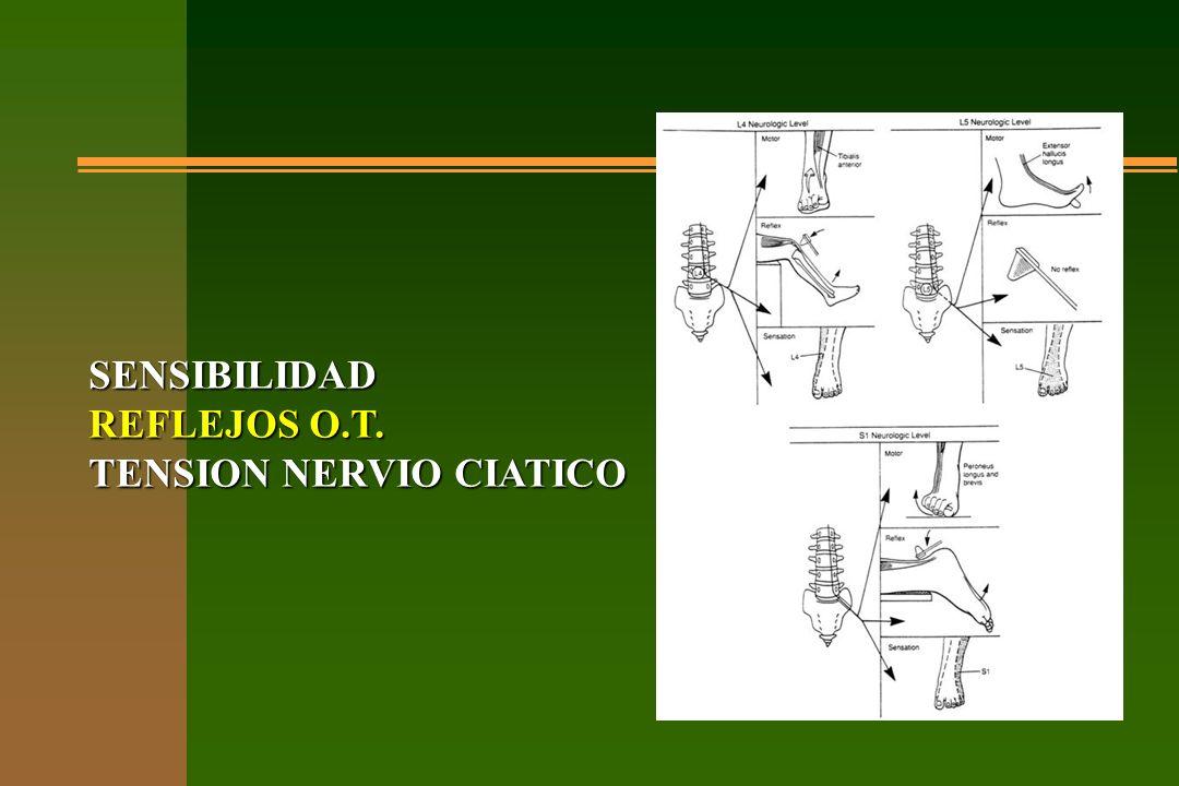 SENSIBILIDAD REFLEJOS O.T. TENSION NERVIO CIATICO