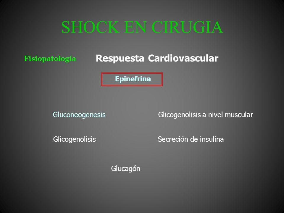 SHOCK EN CIRUGIA Fisiopatología Epinefrina Gluconeogenesis Secreción de insulina Respuesta Cardiovascular Glicogenolisis Glicogenolisis a nivel muscul