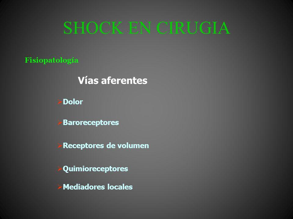 SHOCK EN CIRUGIA Hematocrito Orina Ac. Láctico Bicarbonato Laboratorio