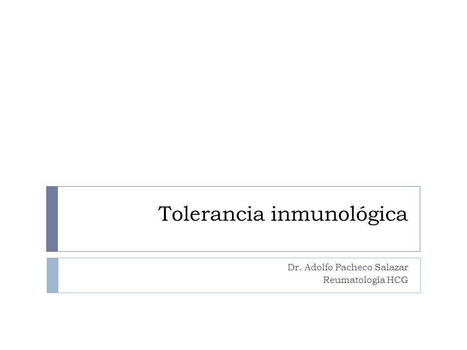 Tolerancia inmunológica Dr. Adolfo Pacheco Salazar Reumatología HCG