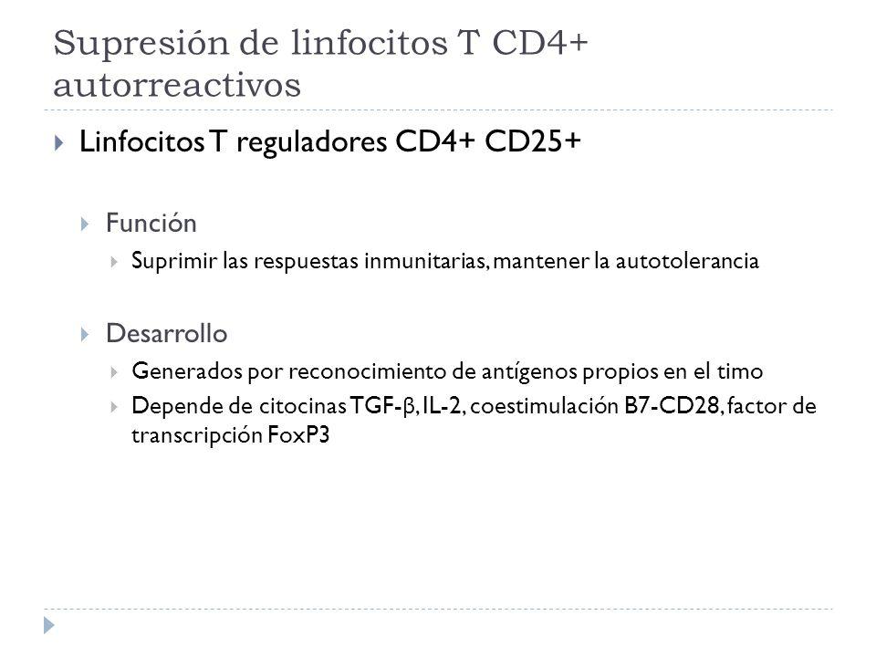 Supresión de linfocitos T CD4+ autorreactivos Linfocitos T reguladores CD4+ CD25+ Función Suprimir las respuestas inmunitarias, mantener la autotolera