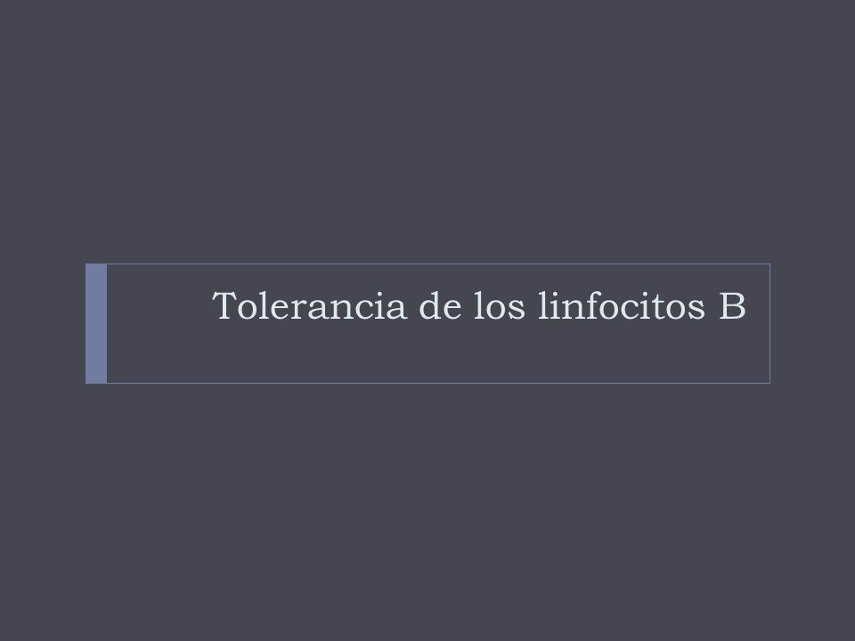 Tolerancia de los linfocitos B