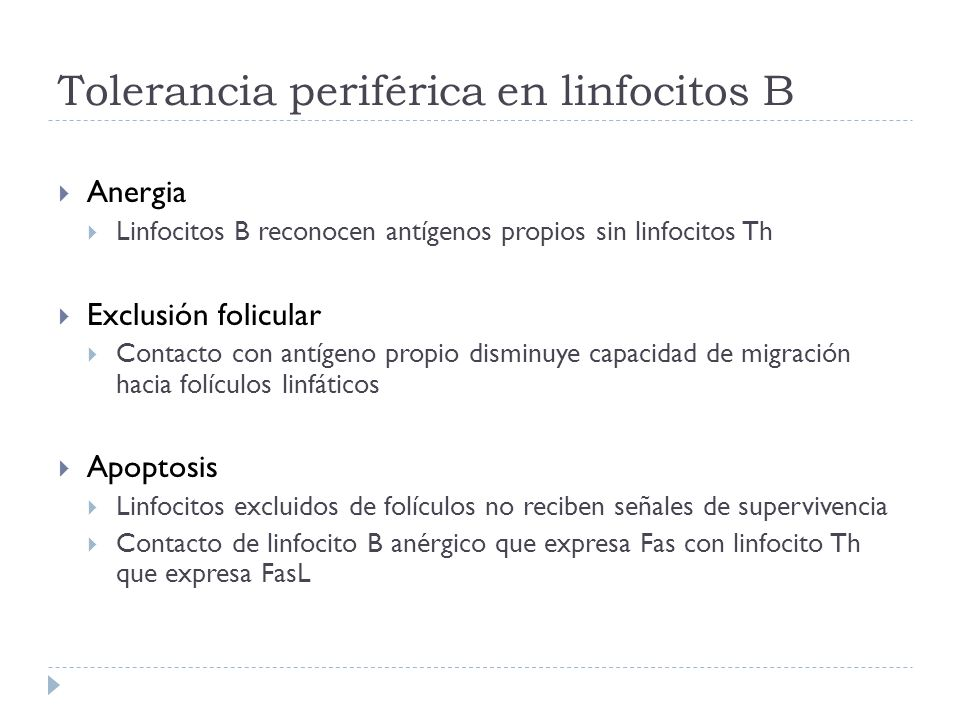 Tolerancia periférica en linfocitos B Anergia Linfocitos B reconocen antígenos propios sin linfocitos Th Exclusión folicular Contacto con antígeno pro