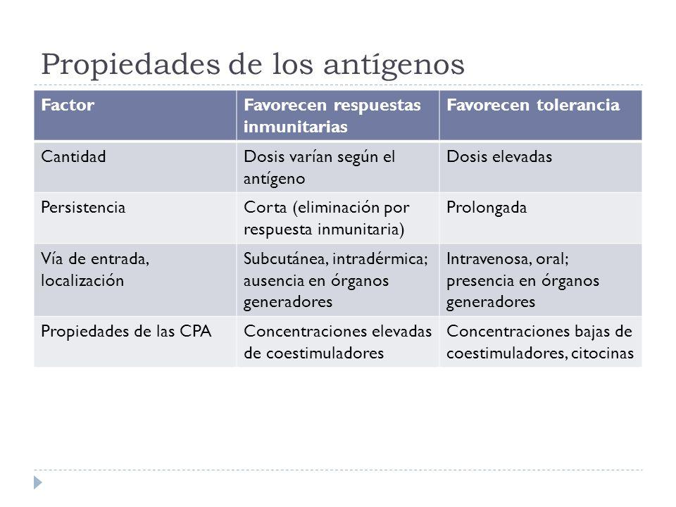 Propiedades de los antígenos FactorFavorecen respuestas inmunitarias Favorecen tolerancia CantidadDosis varían según el antígeno Dosis elevadas Persis