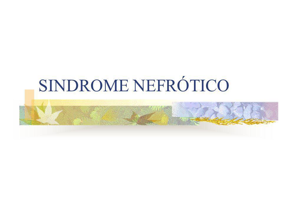 BIOPSIA Si los datos clínicos no revelan una causa clara de síndrome nefrótico.