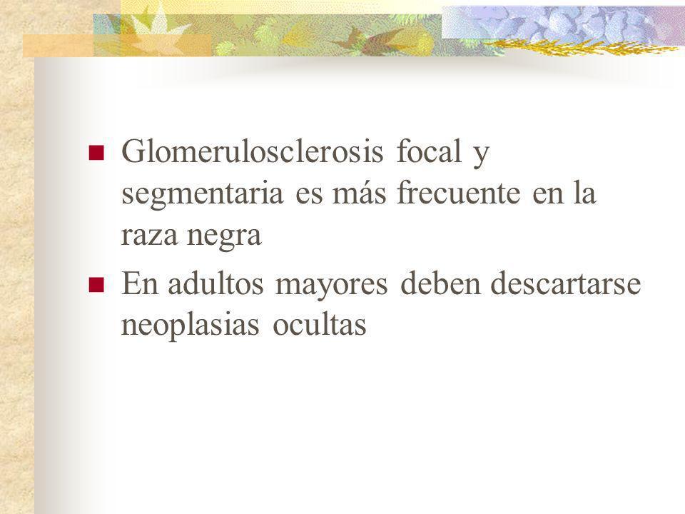 Glomerulosclerosis focal y segmentaria es más frecuente en la raza negra En adultos mayores deben descartarse neoplasias ocultas