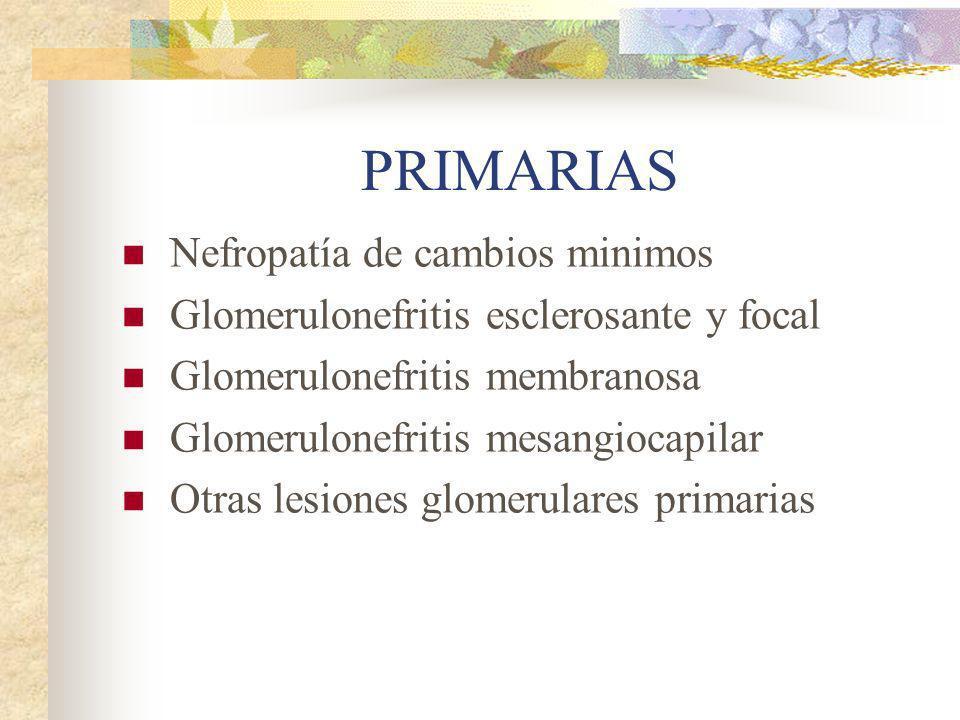 PRIMARIAS Nefropatía de cambios minimos Glomerulonefritis esclerosante y focal Glomerulonefritis membranosa Glomerulonefritis mesangiocapilar Otras le
