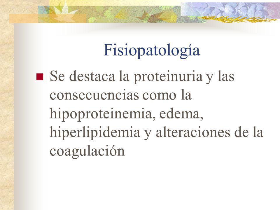 Fisiopatología Se destaca la proteinuria y las consecuencias como la hipoproteinemia, edema, hiperlipidemia y alteraciones de la coagulación