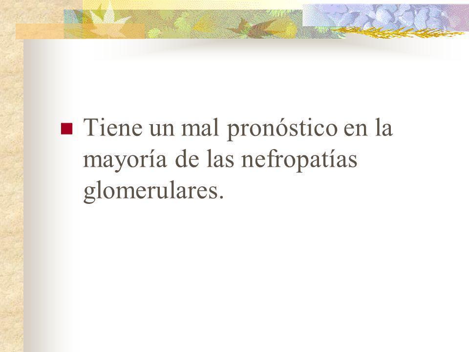 Manifestaciones Clínicas Es la forma clinica más frecuente de las nefropatias glomerulares.