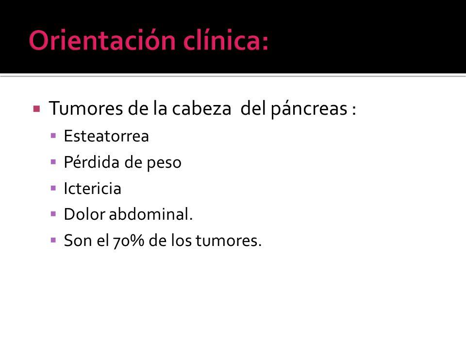 Tumores de la cabeza del páncreas : Esteatorrea Pérdida de peso Ictericia Dolor abdominal. Son el 70% de los tumores.
