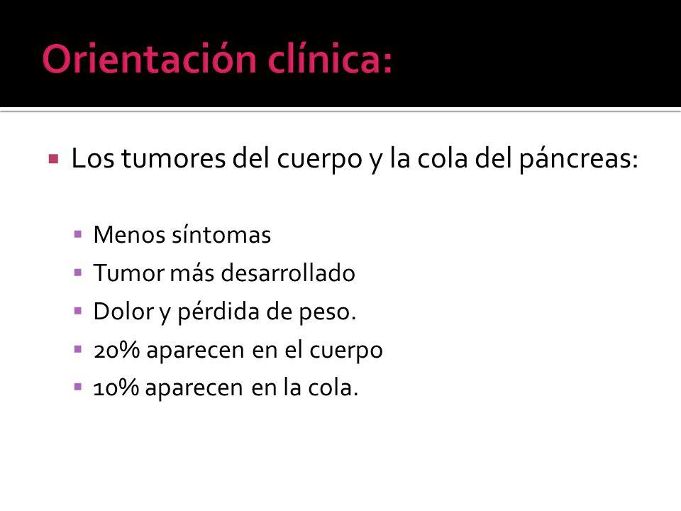 Los tumores del cuerpo y la cola del páncreas: Menos síntomas Tumor más desarrollado Dolor y pérdida de peso. 20% aparecen en el cuerpo 10% aparecen e