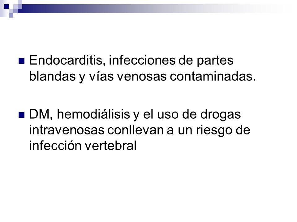 Endocarditis, infecciones de partes blandas y vías venosas contaminadas. DM, hemodiálisis y el uso de drogas intravenosas conllevan a un riesgo de inf