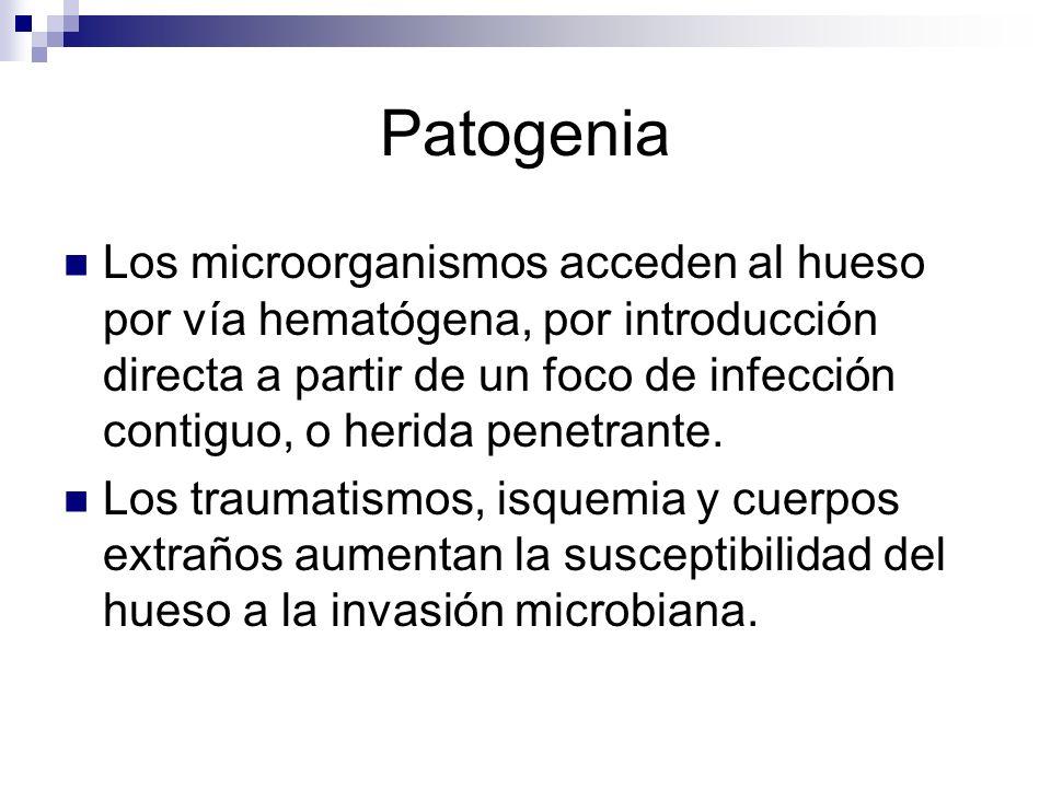 Patogenia Los microorganismos acceden al hueso por vía hematógena, por introducción directa a partir de un foco de infección contiguo, o herida penetr