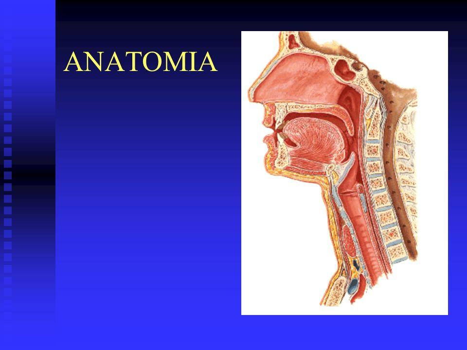 Cáncer de cabeza y cuello Hallazgos clínicos OROFARINGE OROFARINGE dolor dolor úlcera úlcera masa cervical 70% masa cervical 70% otalgia otalgia disfagia disfagia ORL.HCG