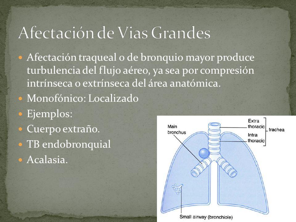 Afectación traqueal o de bronquio mayor produce turbulencia del flujo aéreo, ya sea por compresión intrínseca o extrínseca del área anatómica. Monofón