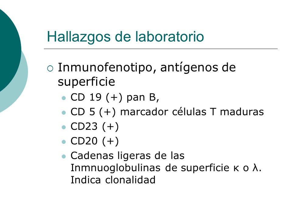 Hallazgos de laboratorio Inmunofenotipo, antígenos de superficie CD 19 (+) pan B, CD 5 (+) marcador células T maduras CD23 (+) CD20 (+) Cadenas ligera