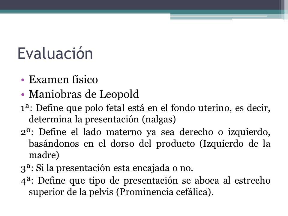 Evaluación Examen físico Maniobras de Leopold 1ª: Define que polo fetal está en el fondo uterino, es decir, determina la presentación (nalgas) 2º: Def