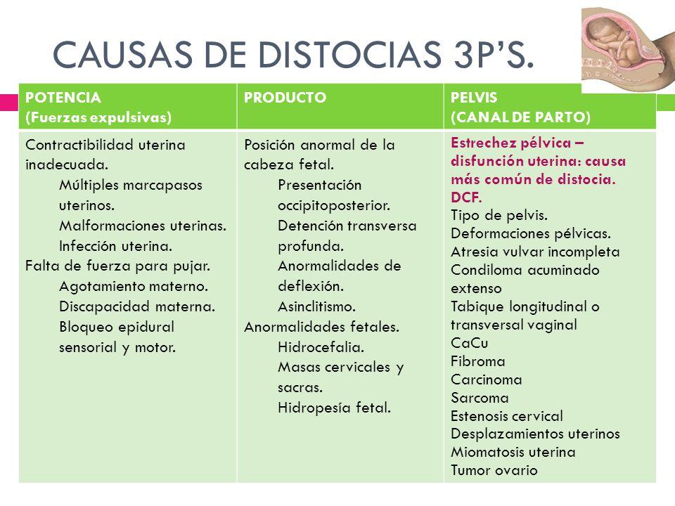 TIPOS DE PELVIS.Antropoide Androide Ginecoide Platipeloide Tipos de pélvis.