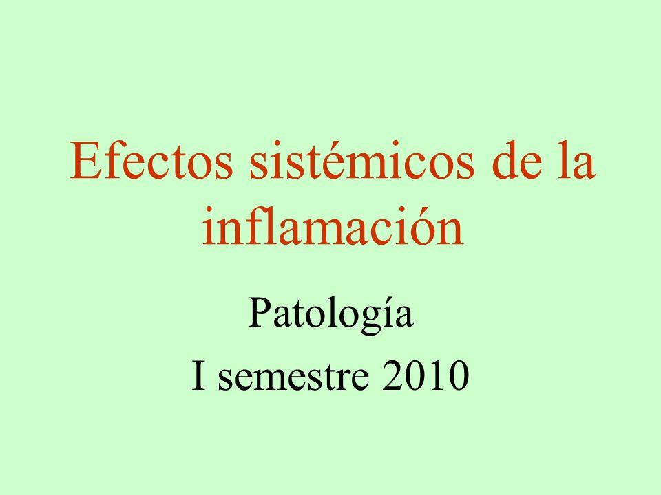 Efectos sistémicos de la inflamación Patología I semestre 2010