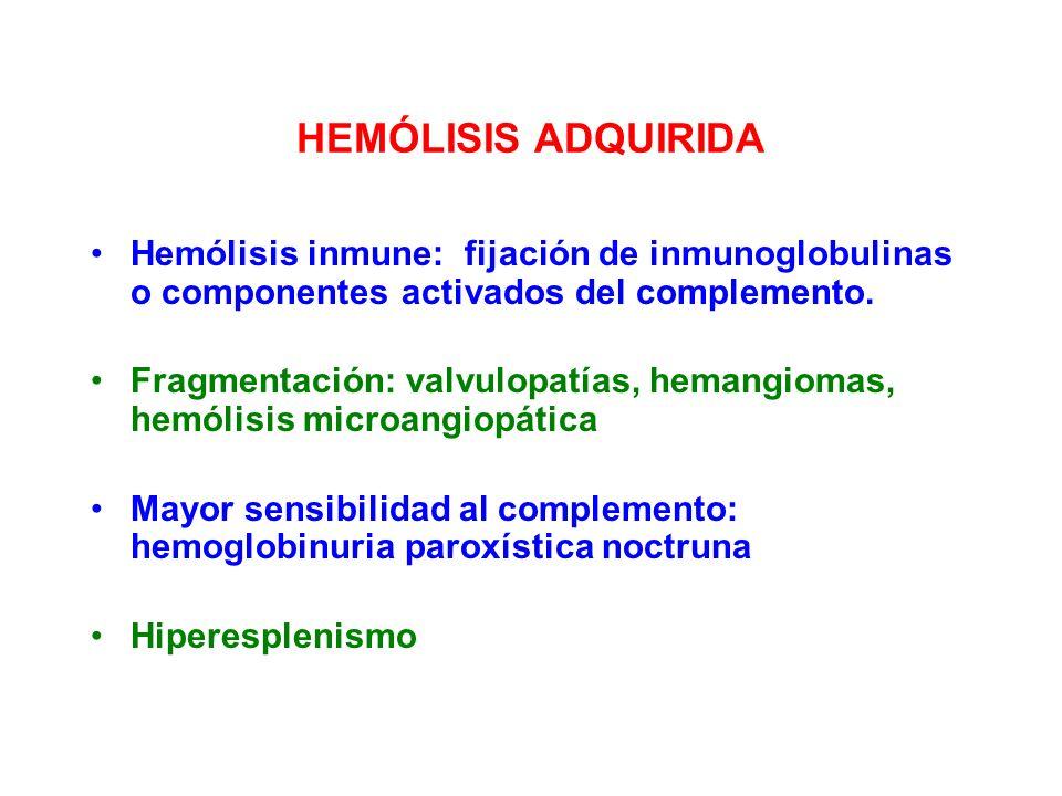 HEMÓLISIS ADQUIRIDA Hemólisis inmune: fijación de inmunoglobulinas o componentes activados del complemento. Fragmentación: valvulopatías, hemangiomas,