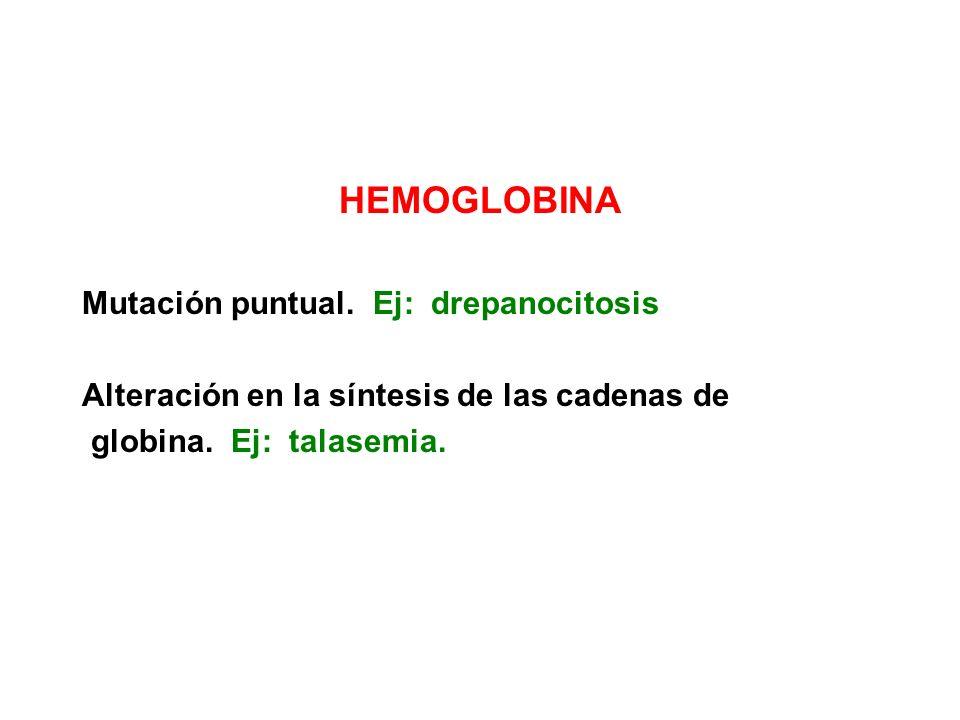 HEMOGLOBINA Mutación puntual. Ej: drepanocitosis Alteración en la síntesis de las cadenas de globina. Ej: talasemia.