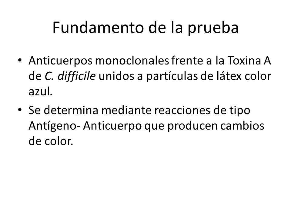 Fundamento de la prueba Anticuerpos monoclonales frente a la Toxina A de C. difficile unidos a partículas de látex color azul. Se determina mediante r