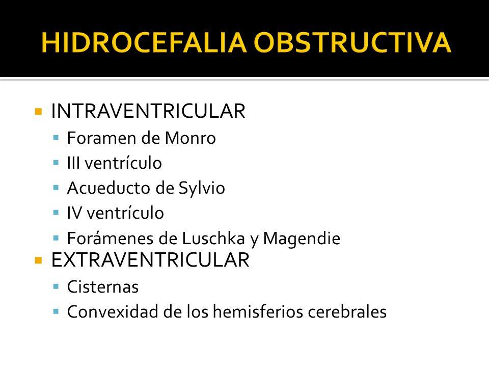 INTRAVENTRICULAR Foramen de Monro III ventrículo Acueducto de Sylvio IV ventrículo Forámenes de Luschka y Magendie EXTRAVENTRICULAR Cisternas Convexid