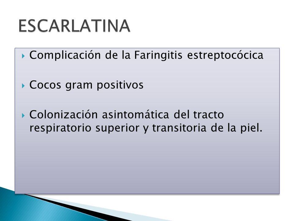 Transmisión Persona a persona Gotitas respiratorias Heridas en piel PI 1-7 días Incidencia Niños de 5-15 años Faringitis Personas con infecciones de tejidos blandos Ancianos Más frecuente en los meses fríos Piodermia y Glomerulonefritis asociada a meses cálidos