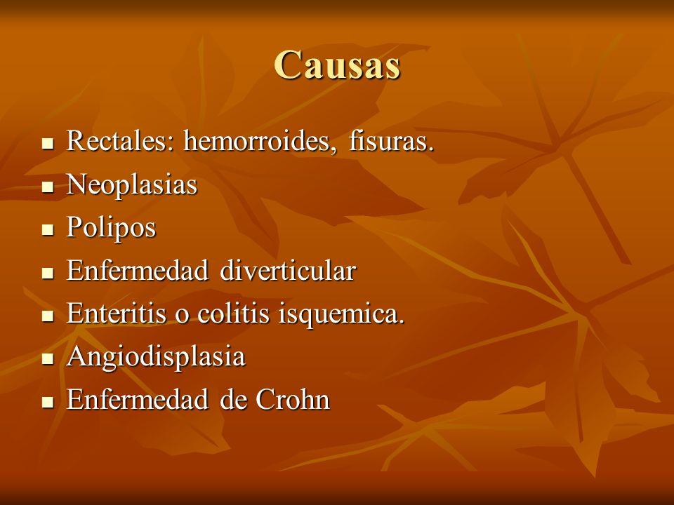 Causas Rectales: hemorroides, fisuras. Rectales: hemorroides, fisuras. Neoplasias Neoplasias Polipos Polipos Enfermedad diverticular Enfermedad divert