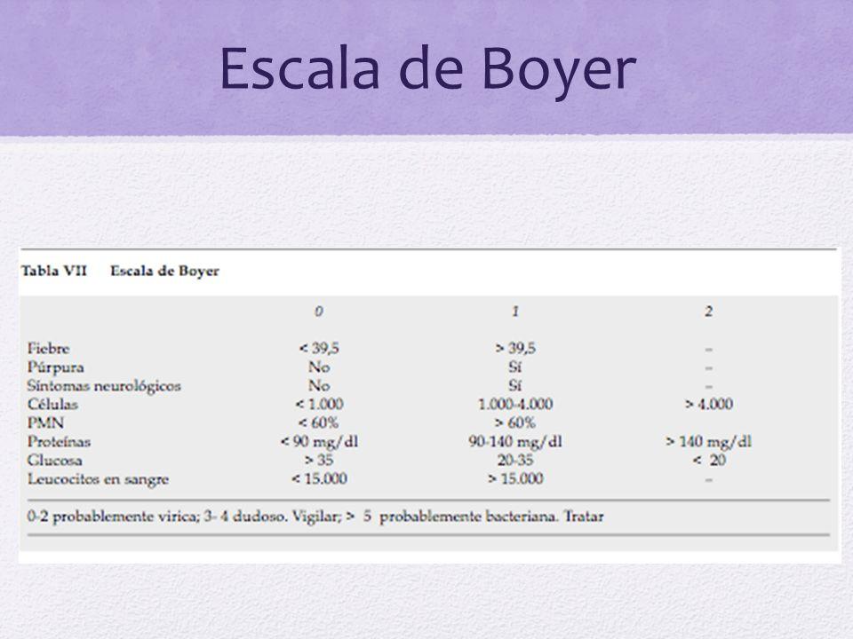 Escala de Boyer
