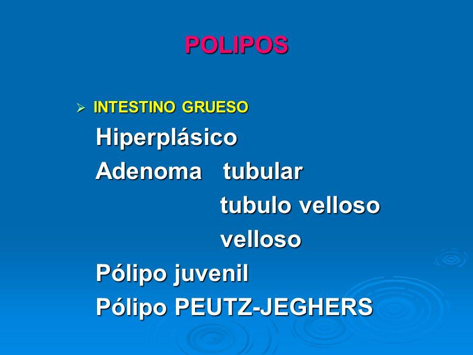 POLIPOS INTESTINO GRUESO INTESTINO GRUESO Hiperplásico Hiperplásico Adenoma tubular Adenoma tubular tubulo velloso tubulo velloso velloso velloso Póli