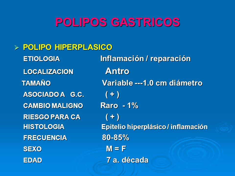 POLIPOS GASTRICOS POLIPO HIPERPLASICO POLIPO HIPERPLASICO ETIOLOGIA Inflamación / reparación ETIOLOGIA Inflamación / reparación LOCALIZACION Antro LOC