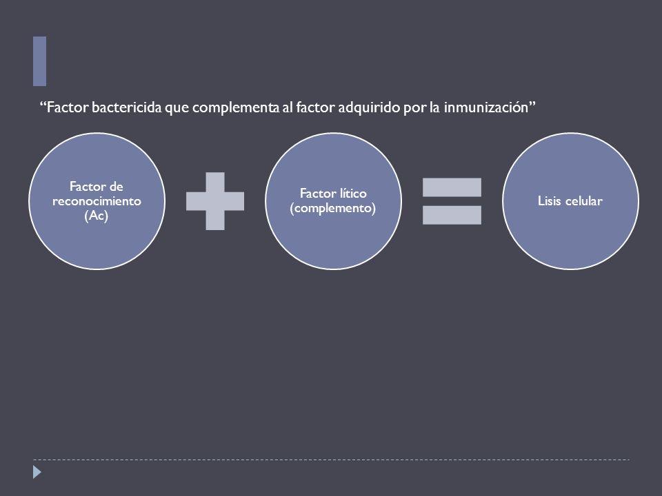 Factor de reconocimiento (Ac) Factor lítico (complemento) Lisis celular Factor bactericida que complementa al factor adquirido por la inmunización