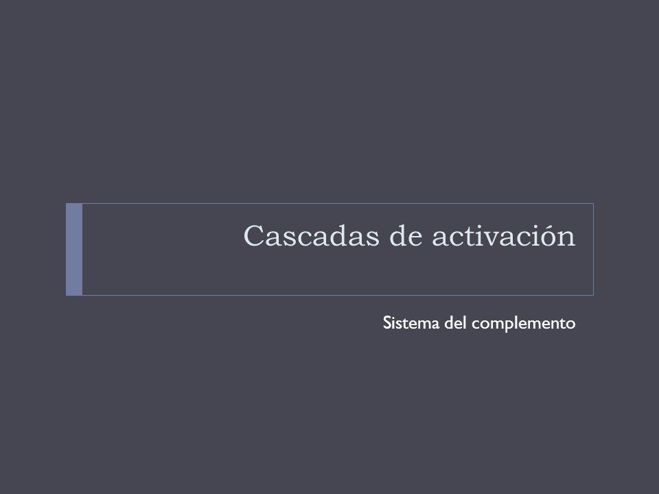 Cascadas de activación Sistema del complemento