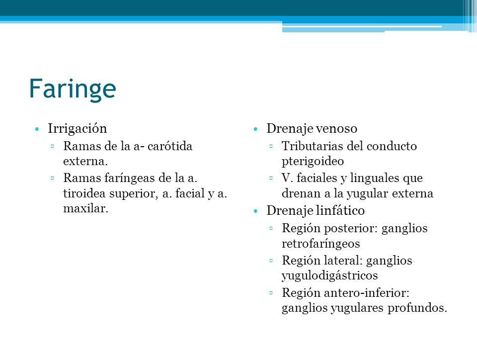 Faringe Irrigación Ramas de la a- carótida externa. Ramas faríngeas de la a. tiroidea superior, a. facial y a. maxilar. Drenaje venoso Tributarias del