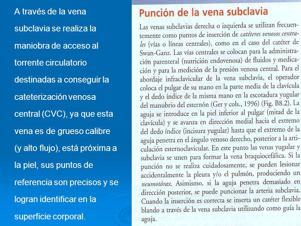 A través de la vena subclavia se realiza la maniobra de acceso al torrente circulatorio destinadas a conseguir la cateterización venosa central (CVC),
