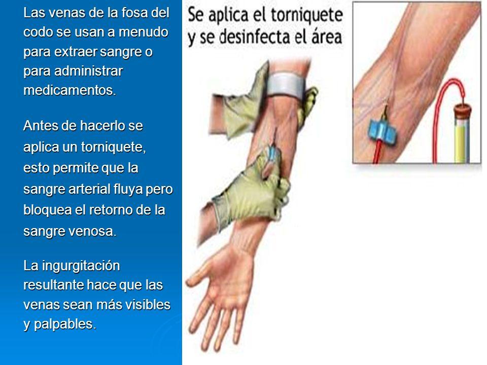 Las venas de la fosa del codo se usan a menudo para extraer sangre o para administrar medicamentos. Antes de hacerlo se aplica un torniquete, esto per