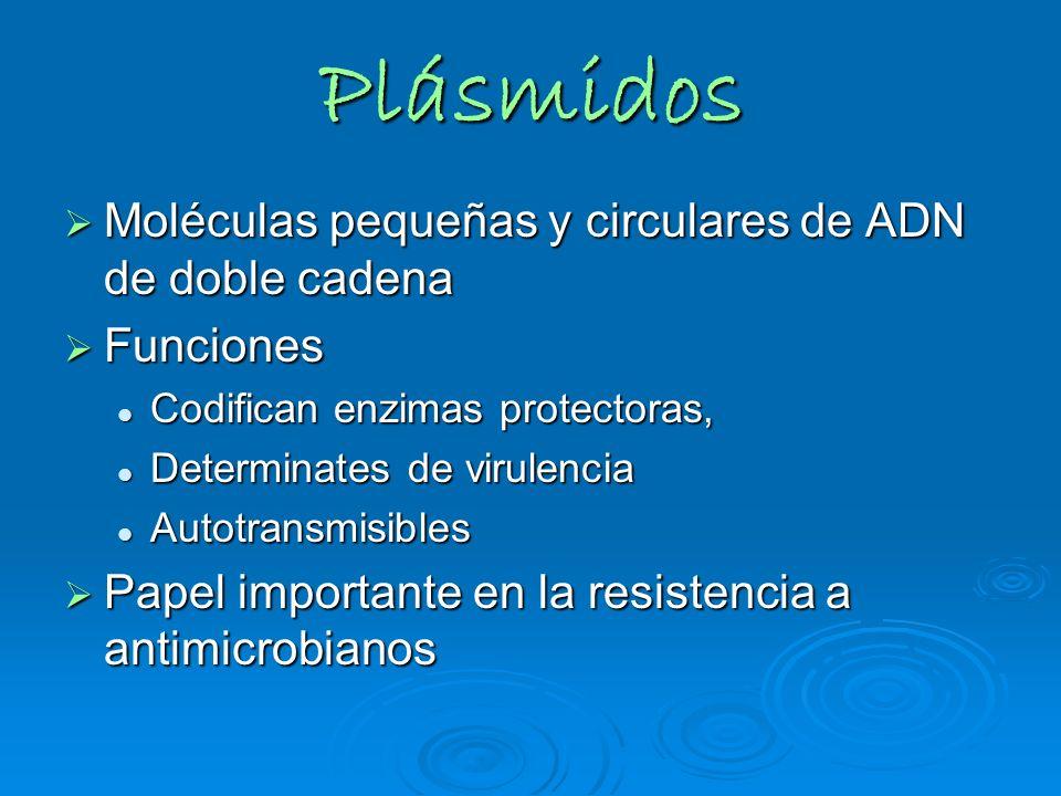 Plásmidos Moléculas pequeñas y circulares de ADN de doble cadena Moléculas pequeñas y circulares de ADN de doble cadena Funciones Funciones Codifican