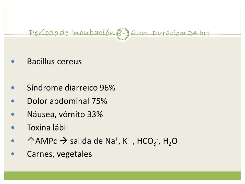 Periodo de Incubación 8-16 hrs Duraciom 24 hrs Bacillus cereus Síndrome diarreico 96% Dolor abdominal 75% Náusea, vómito 33% Toxina lábil AMPc salida