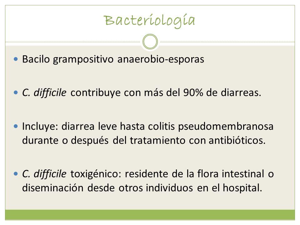 Bacteriología Bacilo grampositivo anaerobio-esporas C. difficile contribuye con más del 90% de diarreas. Incluye: diarrea leve hasta colitis pseudomem
